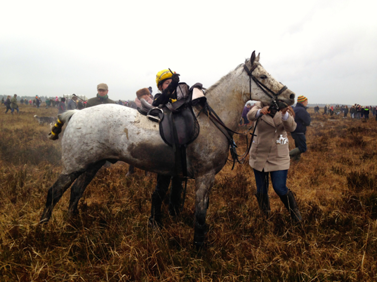 The New Forest Point-to-Point is a celebration of history, heritage and country pastimes.