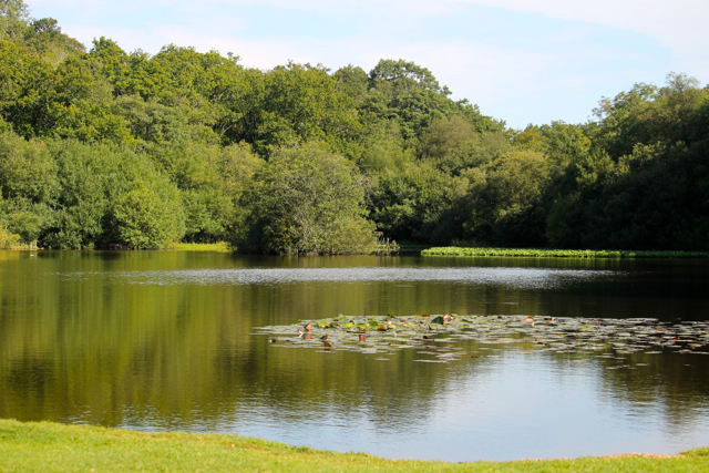 Eyeworth Pond was created to feed the Shultze Gunpowder Factory.