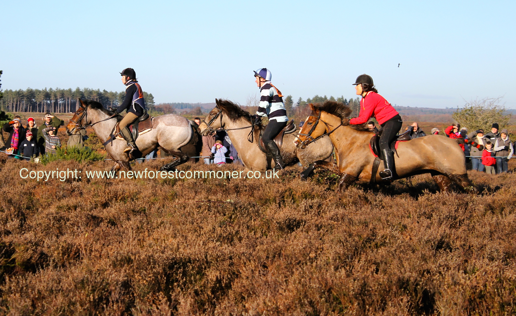 The Boxing Day point-to-point has a full race card including veteran's, children's, and ladies races.