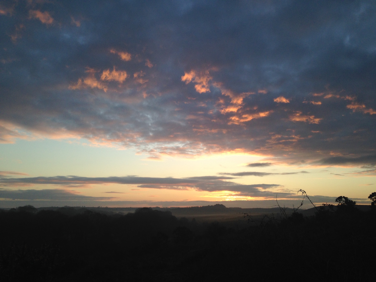 A dawn walk on the New Forest is the best way to start the day.