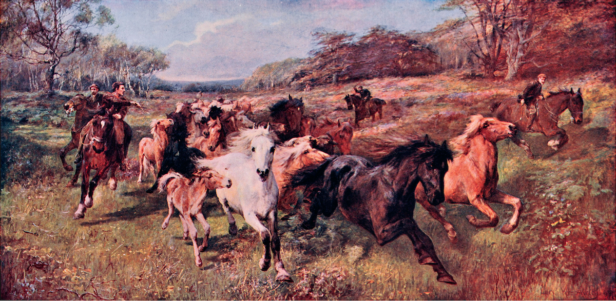 'Colt Hunting in the New Forest' by Lucy Kemp-Welch (circa. 1897).